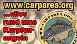 Carparea